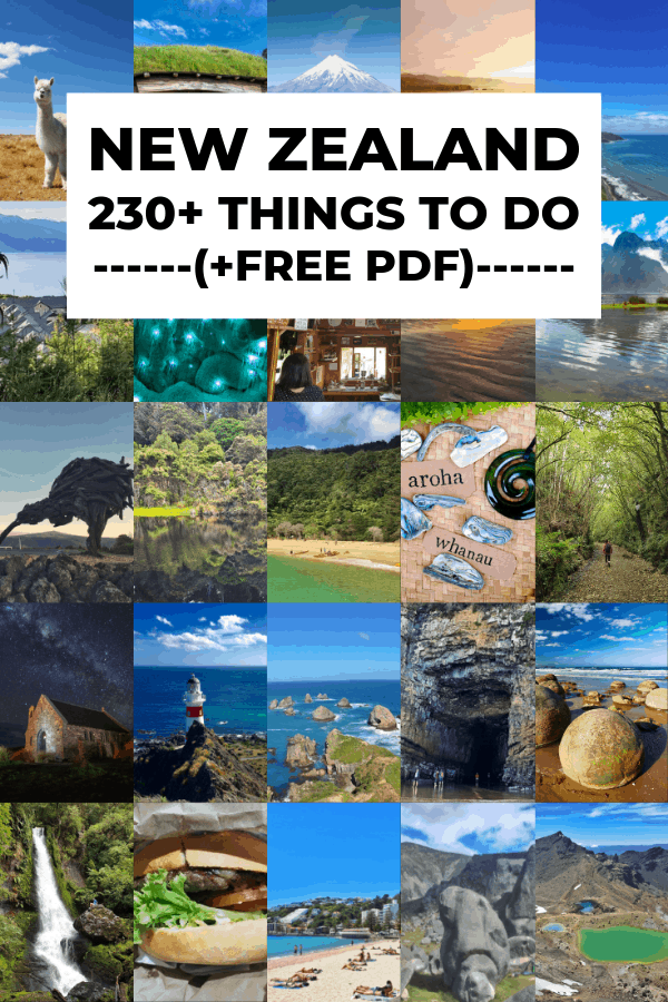 fun things to do in new zealand guide