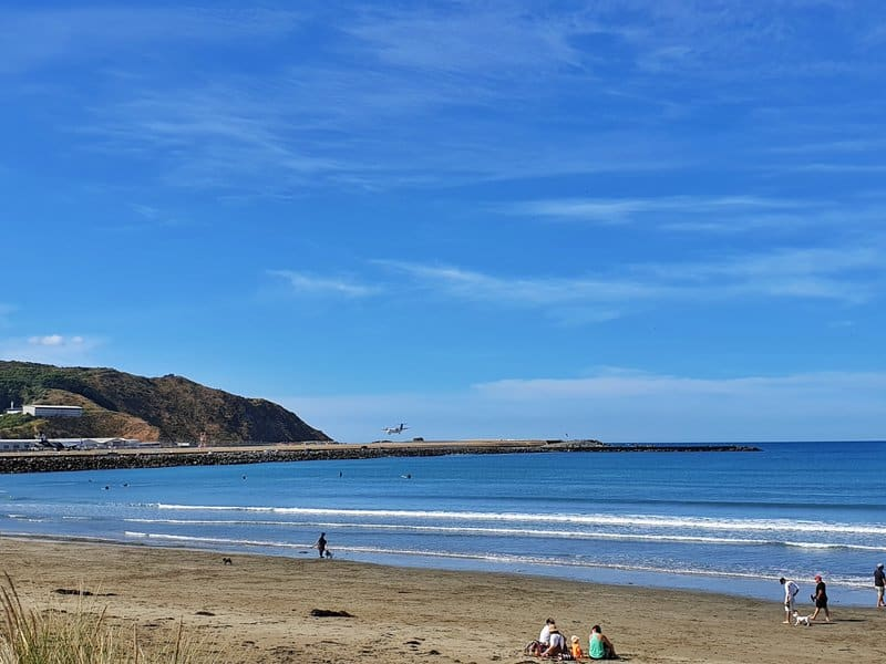 lyall bay view looking towards the wellington airport with a plane landing