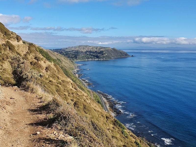 looking south on the paekakariki escarpment track