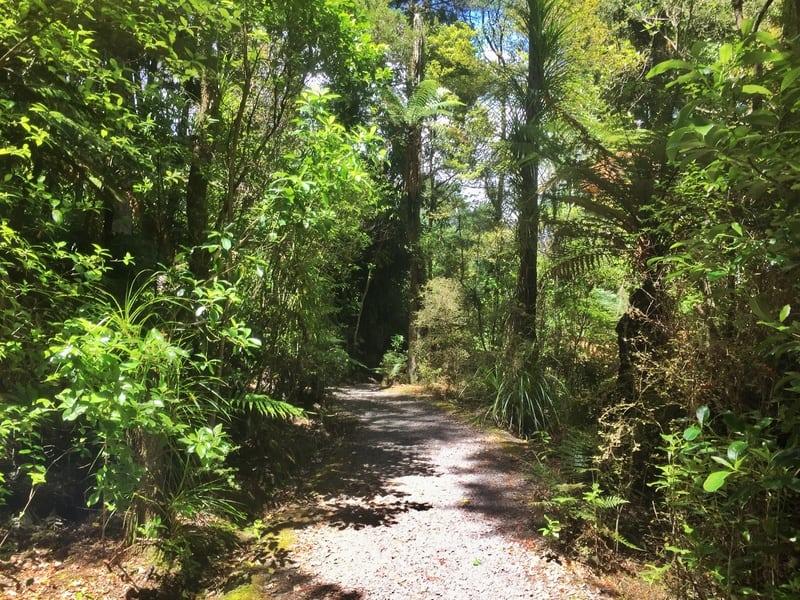 hatea trail whangarei