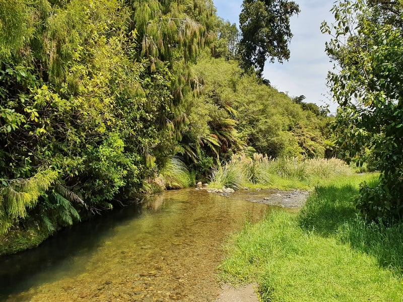 waikanae river on the mangaone walkway