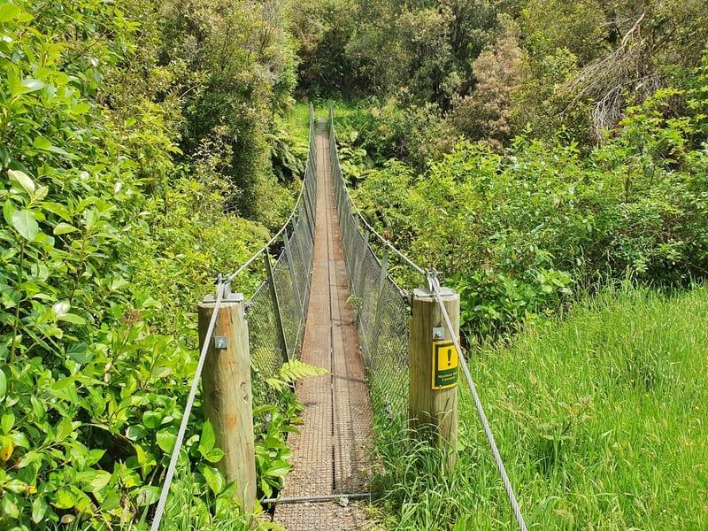 a swingbridge surrounded by bush