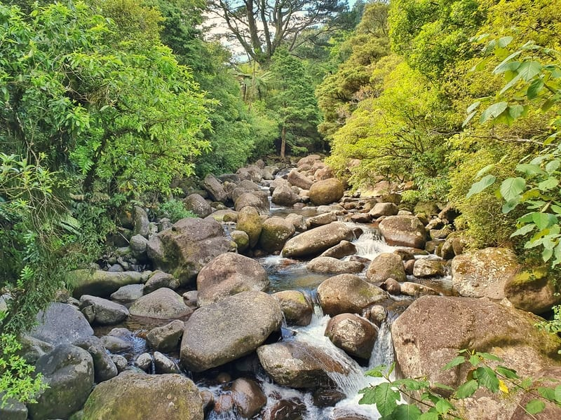 a stream with boulders