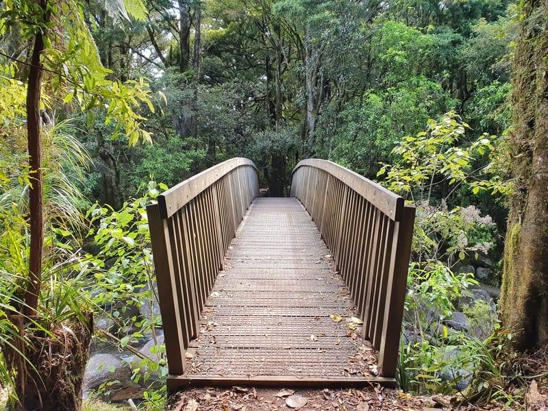 wairere falls bridge