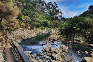 karangahake gorge walks