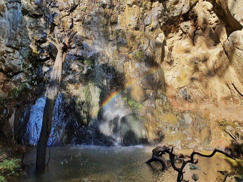 karangahake falls