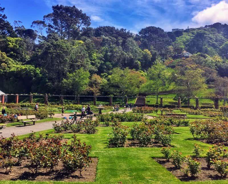 gardens in wellington