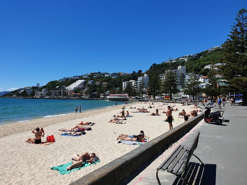 people on a beach in wellington is a common sight of things to do in wellington