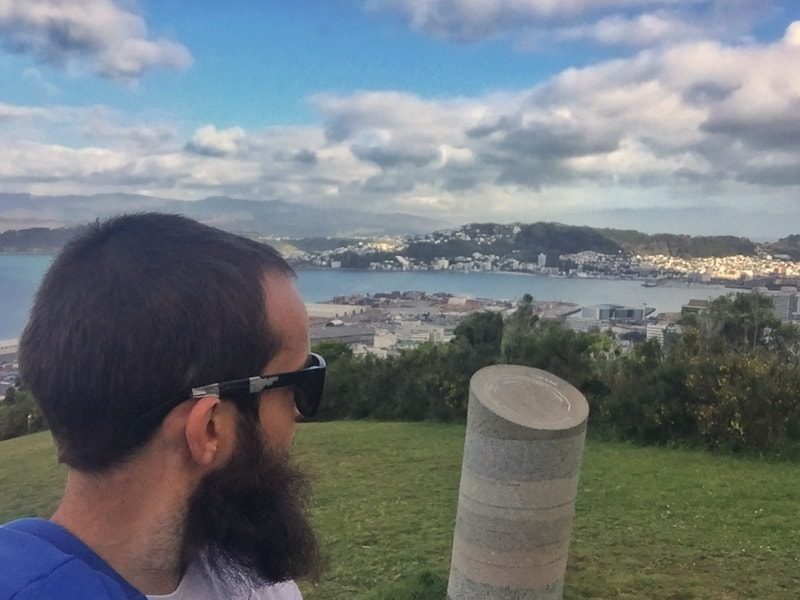 man looking out over wellington harbour