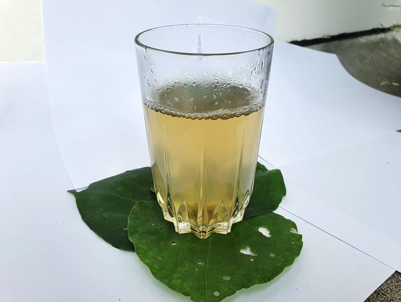 a glass of kawakawa tea