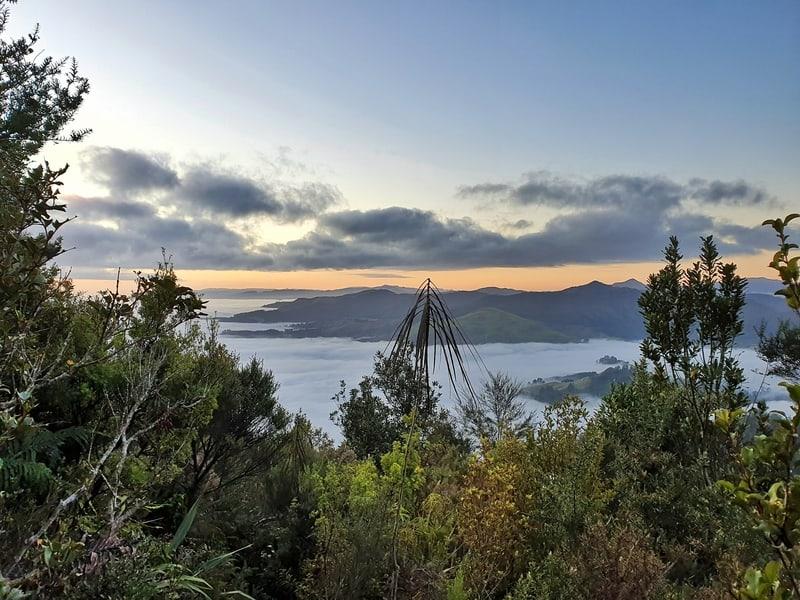a view from the karangahake mountain track