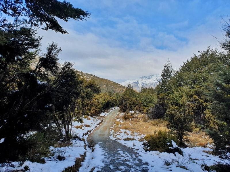 mount crichton loop track walk