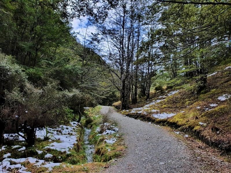 mount crichton walkway