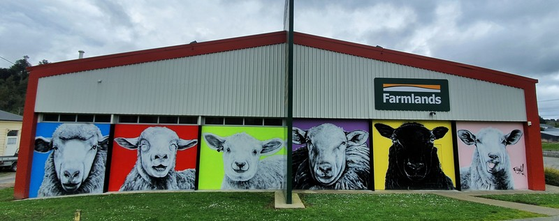 things to do in Taihape