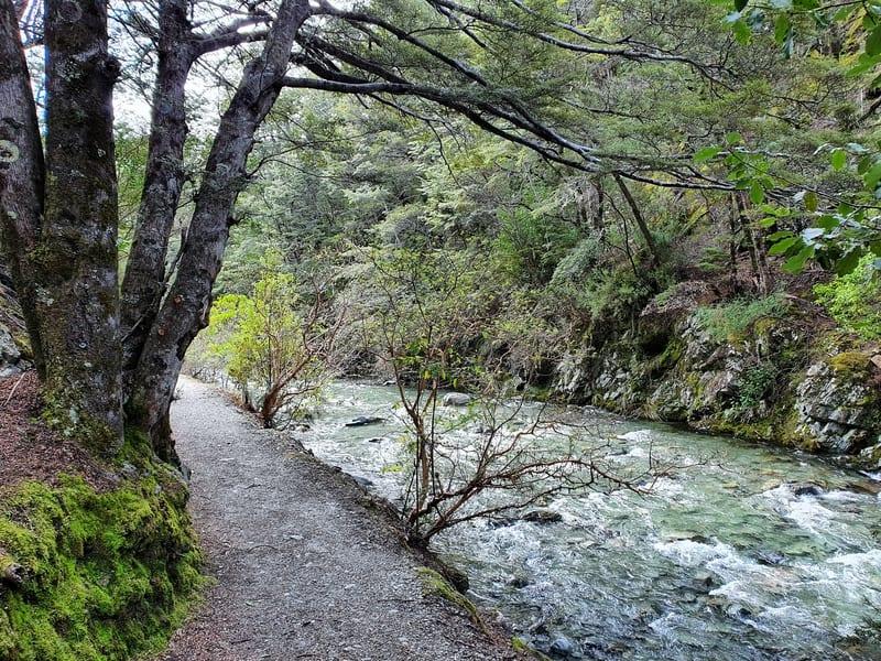 twelve mile creek