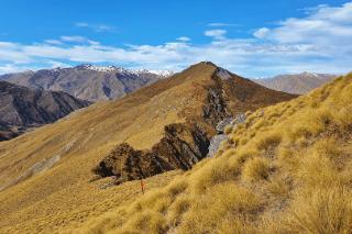 brow peak track