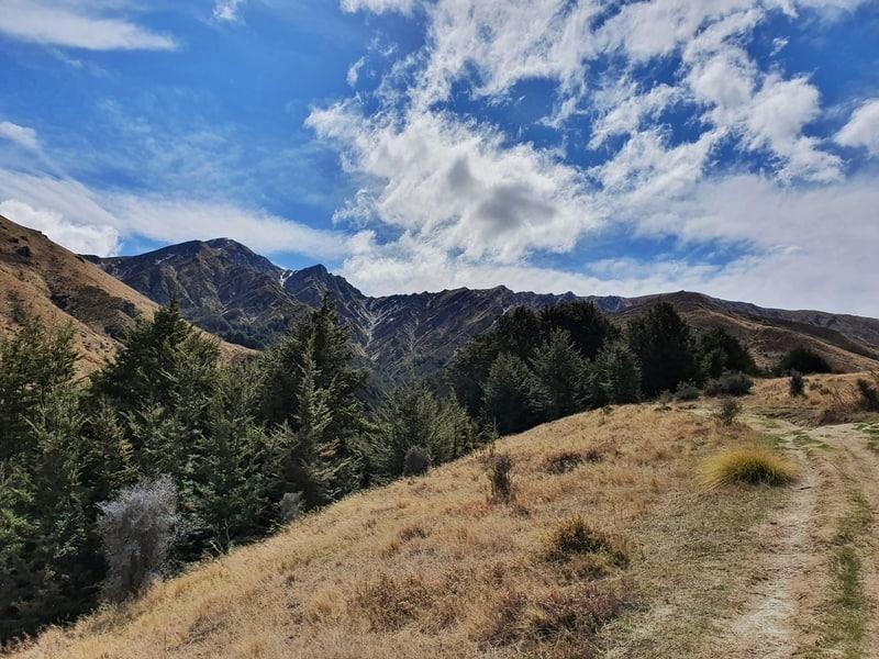 start of the hike to brow peak