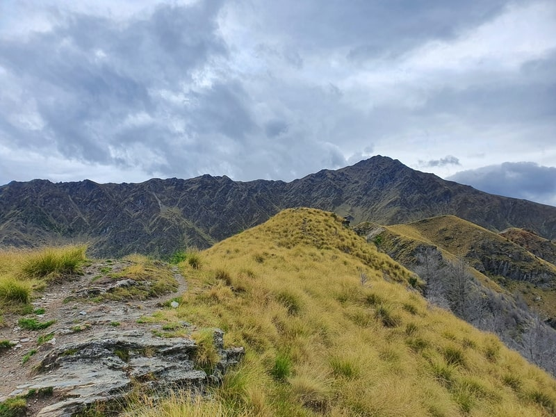 ridgeline above queenstown with a mountain in the distance